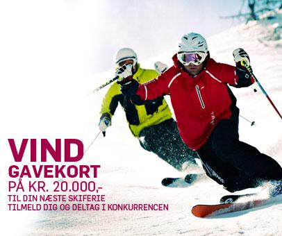 Billige ski
